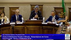 Miniatura del video: CORSO DI MEDIAZIONE PENALE E MINORILE - PRIMA LEZIONE (Roma, 4.09.2019)